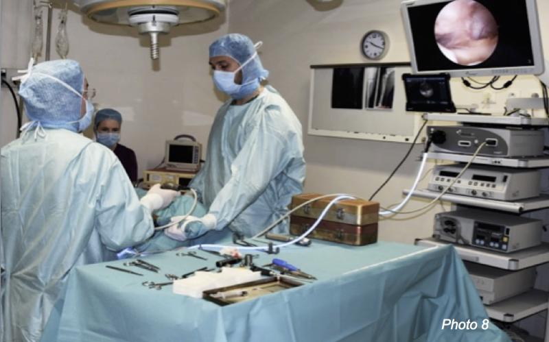 Opération clinique vétérinaire à Neuilly-sur-Seine, Paris